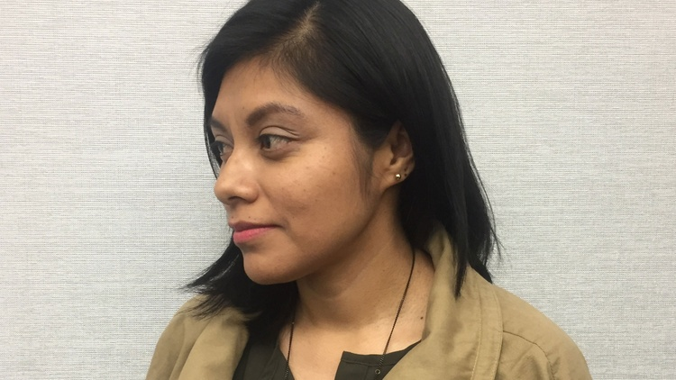In this week's Scheer Intelligence, Robert Scheer sits down with immigration rights activist Lizbeth Mateo to discuss what should be done for immigrants and her own status.