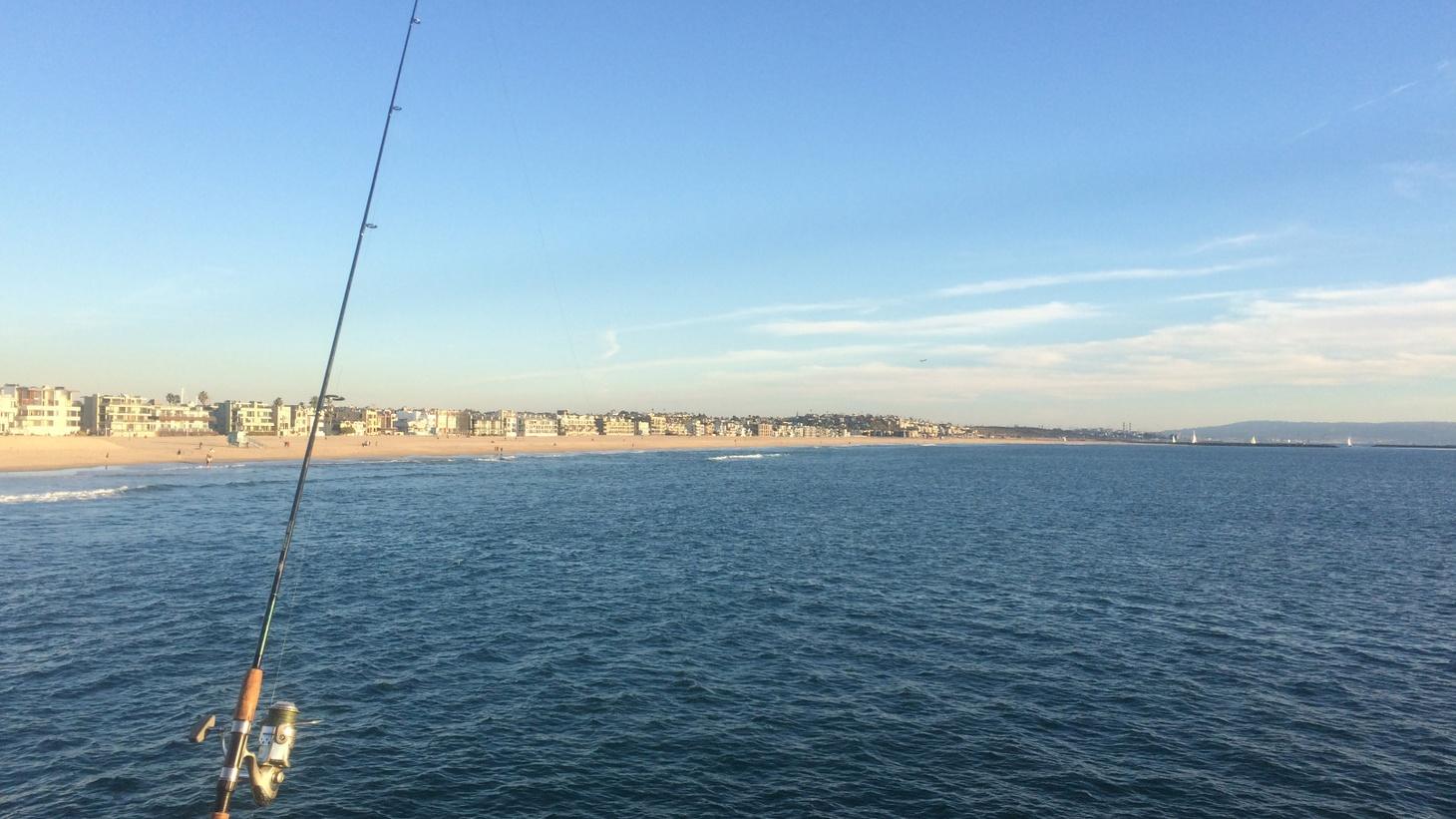 The Venice Pier.