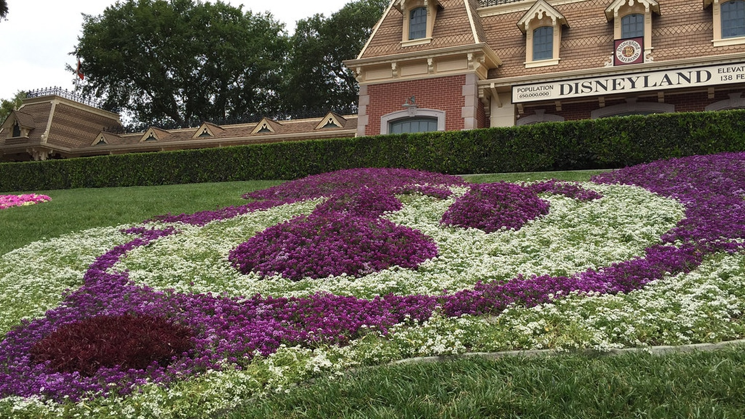 Due to spiking coronavirus numbers, Disneyland will no longer reopen on July 17, as previously announced. No new reopening date has been given.