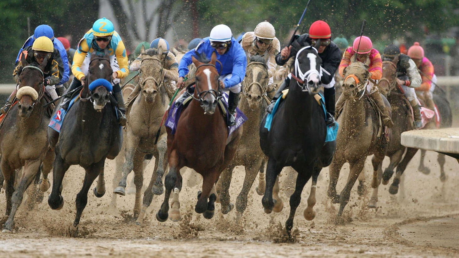 The Kentucky Derby, set to run this Saturday, as is the custom every first Saturday in May, is the oldest continuous sporting event in our country. Since the first settlers stepped onto the Bluegrass fields of Kentucky, horse racing…and horse breeding…have been the heart and soul of the region. If you have a chance to visit the bucolic rolling hills and majestic fenced horse farms that stretch for many miles toward every compass point from Lexington, you'll quickly discover the central conversation, Derby time or otherwise, is bloodlines. More than the furlong track times, what's crucial is which stallions are bred to which mares...