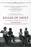 killer_of_sheep.jpg