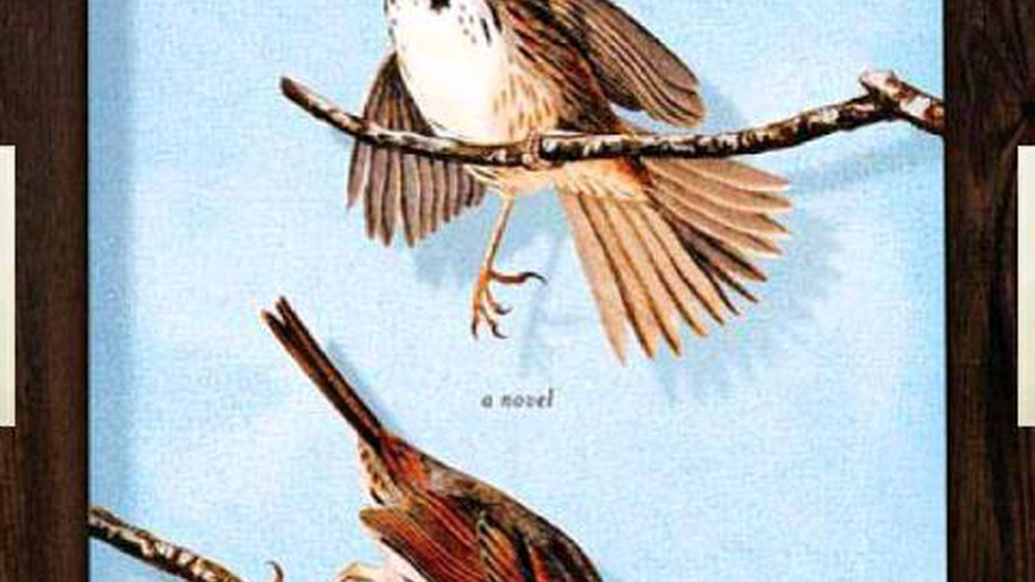 Laura Jacobs has a luminous eye for detail, social and physical. It can be glimpsed in her writings on fashion and culture or in her novels, such as her newest, The Bird Catcher.