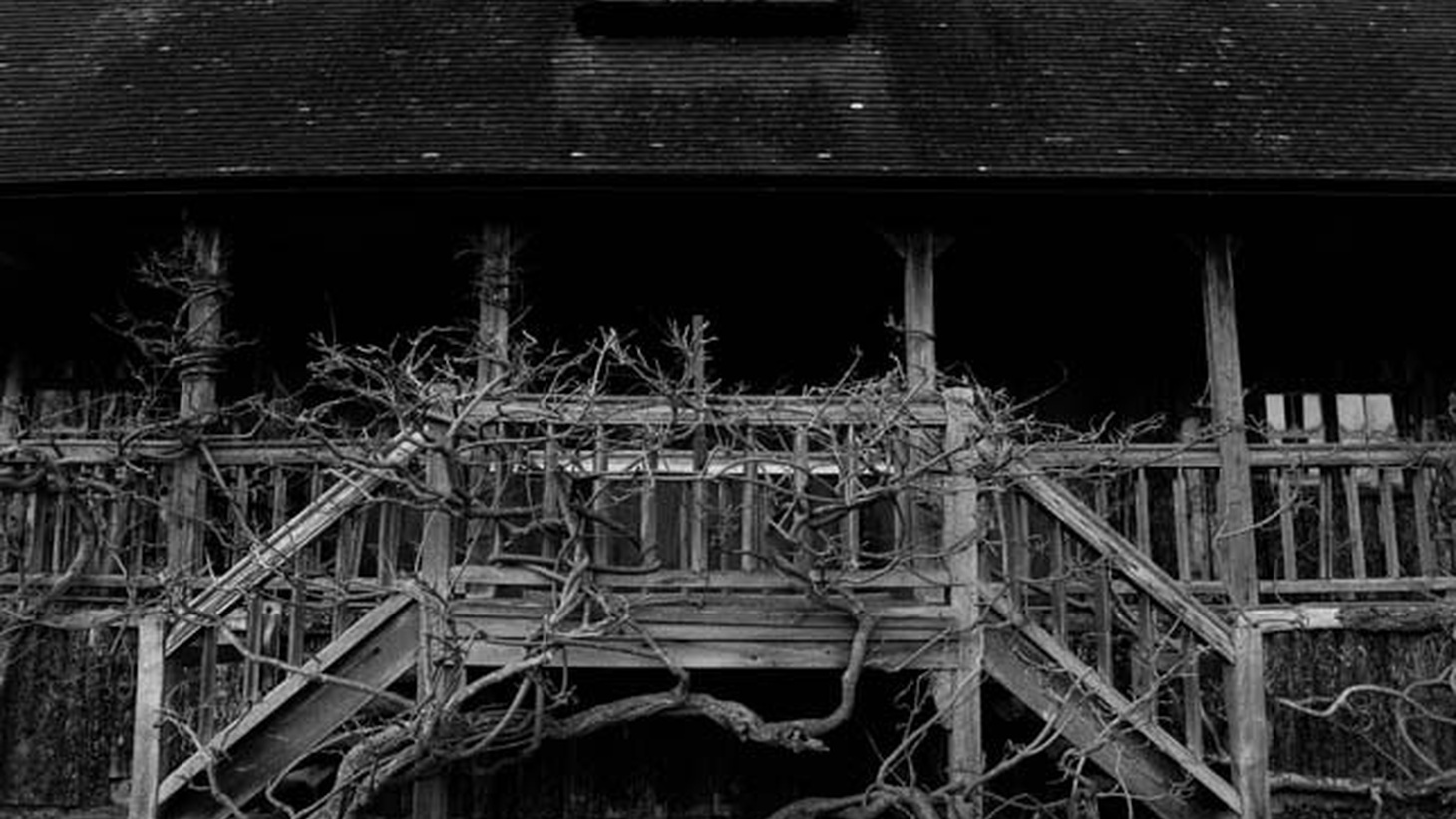 It's a bonus episode! We'll be back in January, but we've got two spooky stories to tide you over – a Halloween classic, and a brand-new, never-before-heard story of a haunted house gone terribly wrong.