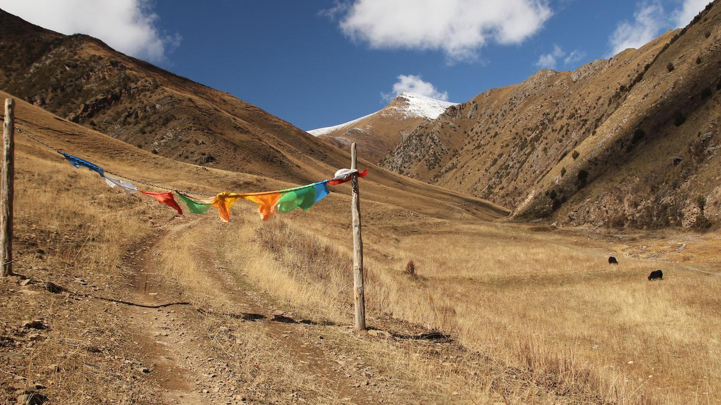 To the nomads of of the Tibetan Plateau, change is part of life and if you've got a yak, you've got everything you need.