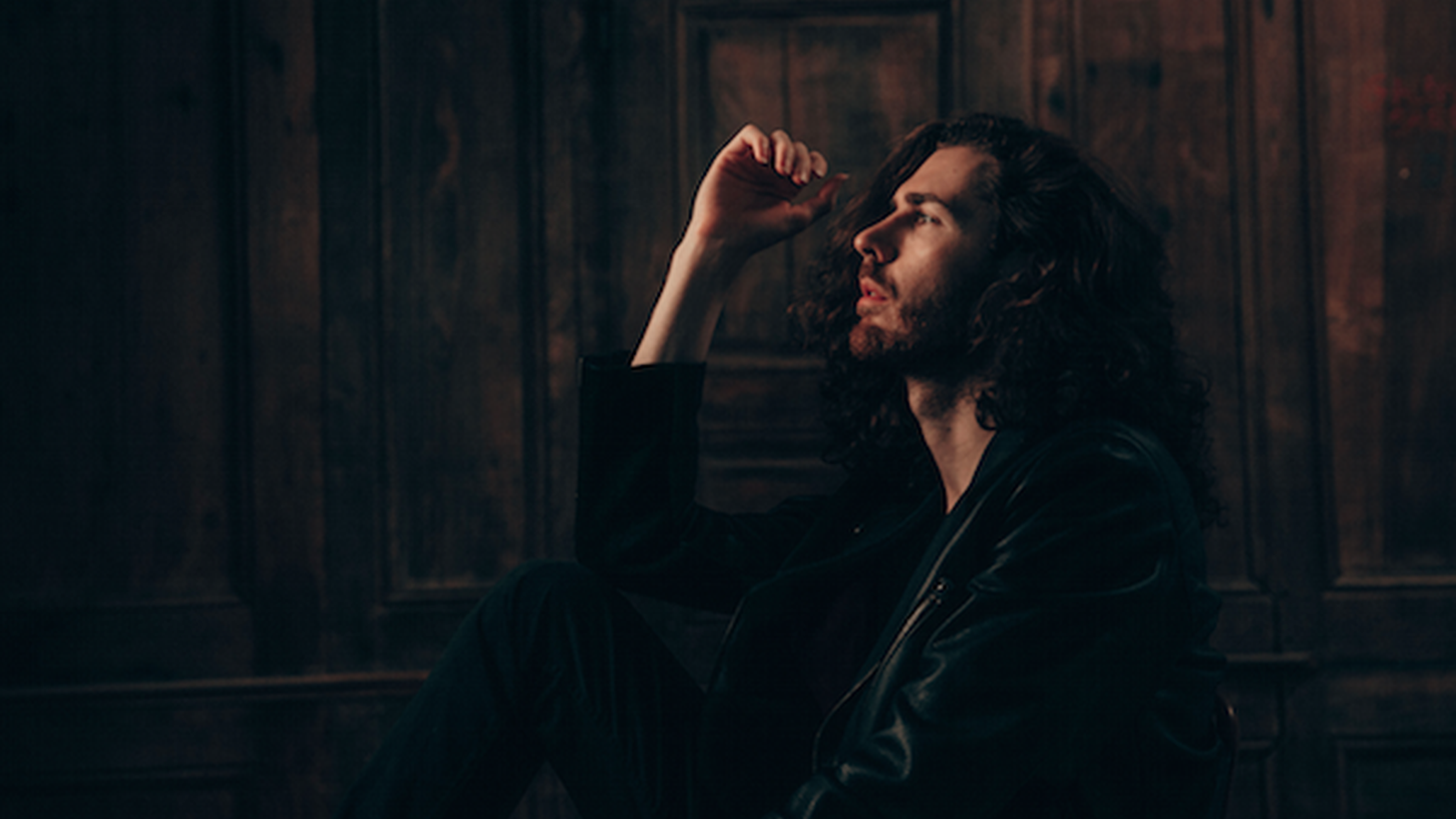 Irish singer Hozier rose quickly to global fame then dropped out of the public eye.