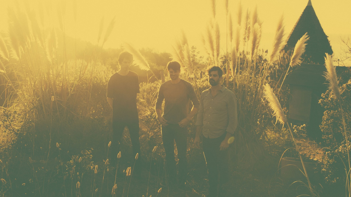 Tycho's compelling ambient electronic instrumental compositions are simultaneously meditative and danceable.