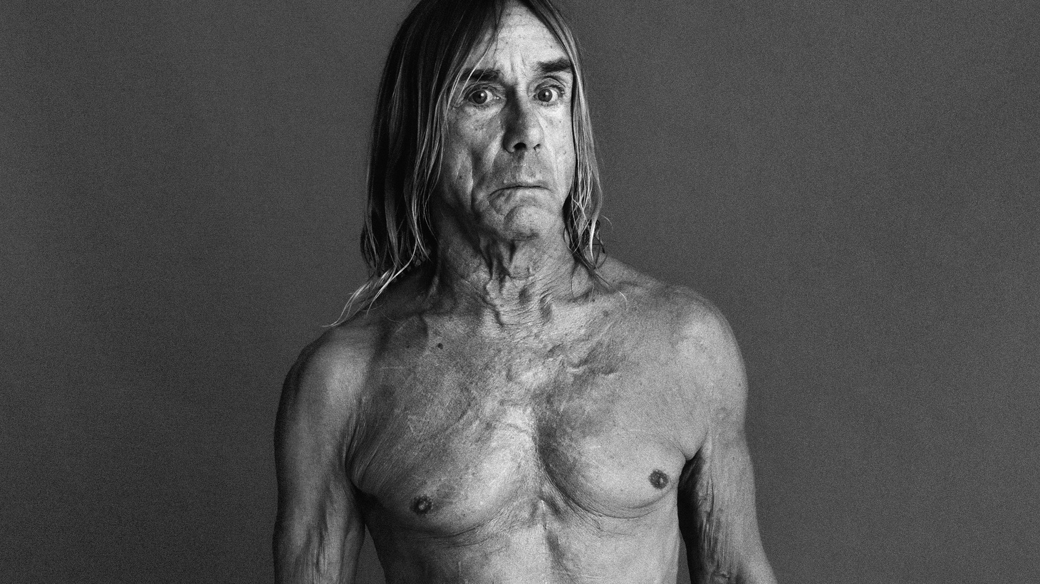 Rock legend Iggy Pop lends his honey-toned dusty vocals (reminiscent of classic Leonard Cohen) to the theme of the film Gold.
