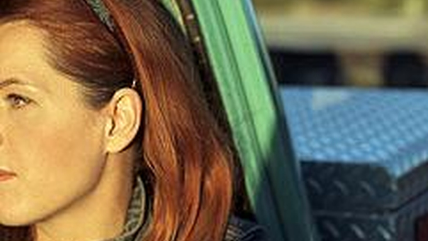 Neko Case is an impeccable singer who deserves more than an alternative-country label. She's Canadian and came into her genre by deconstructing traditional sounds and...