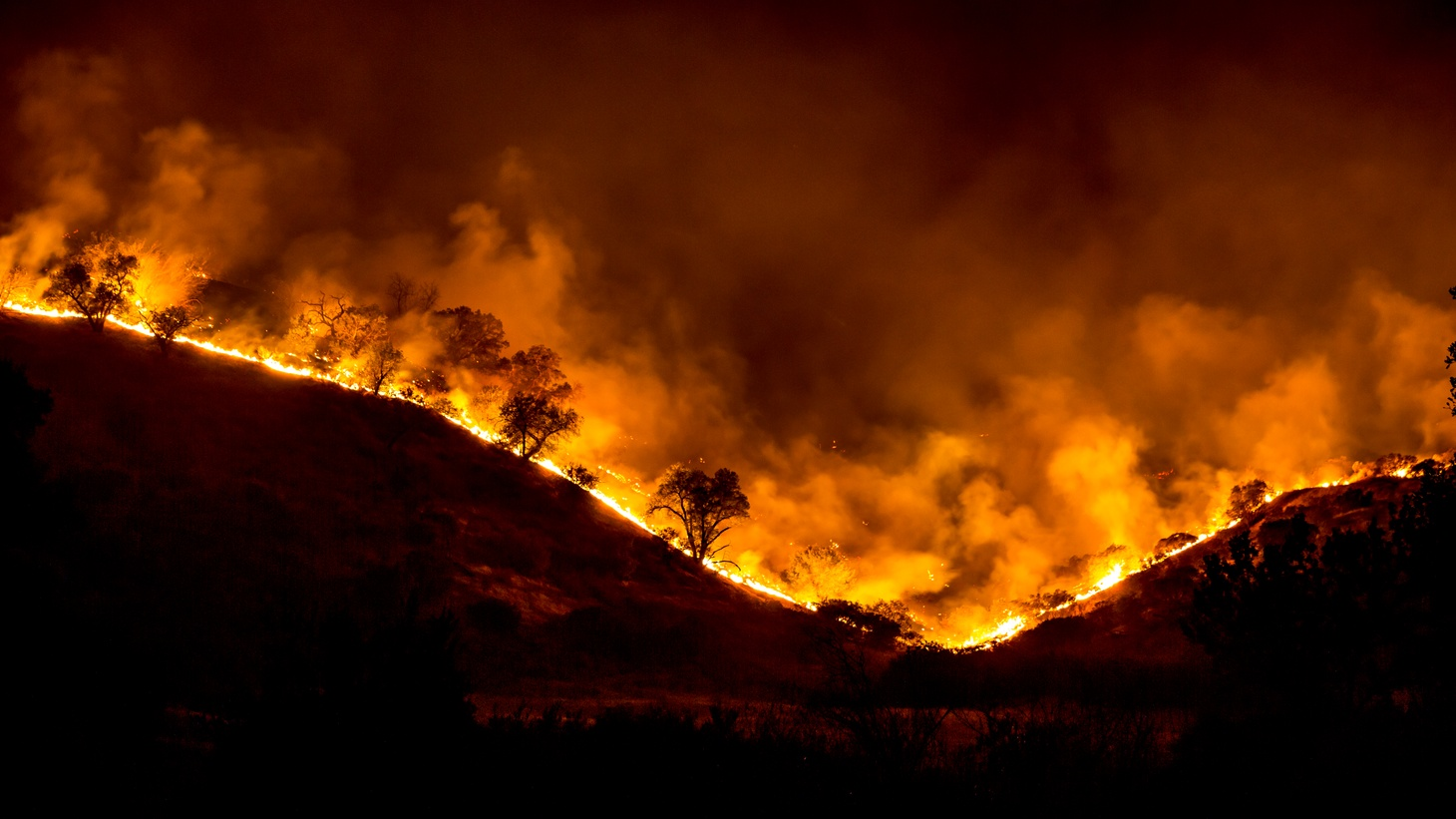 The Woolsey Fire, California.
