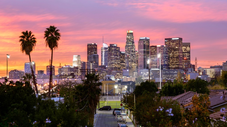 Every 10 years in the City of LA, after the U.S. Census comes out, a redistricting commission draws new lines for the city's council districts.