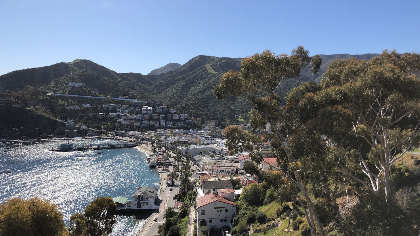 View of the City of Avalon on Catalina Island, from the century-old bell tower that chimes every 15 minutes. Many residents hold more than one job to keep up with the standard of living on the island.