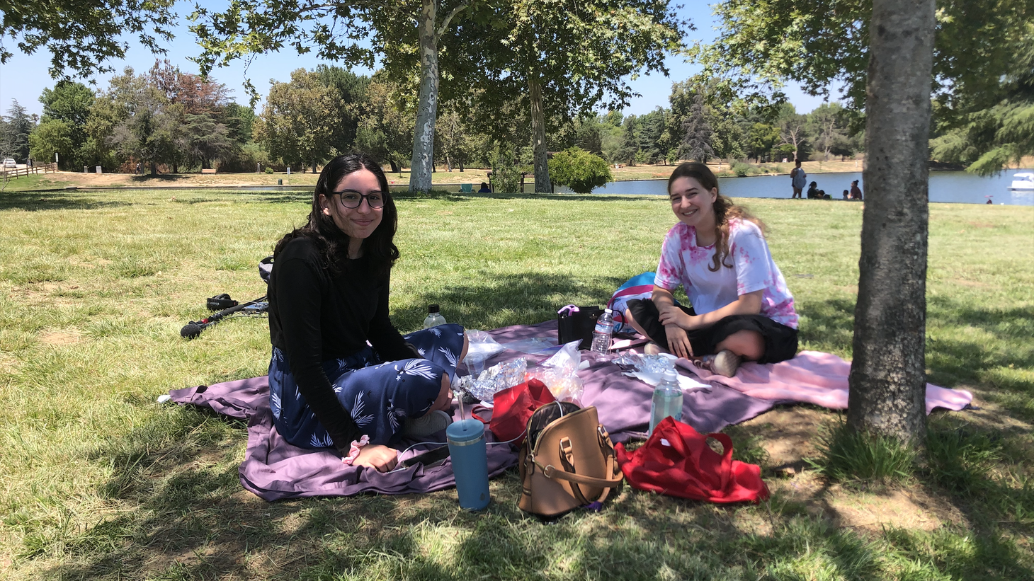 Maya Shternberg and Mayan Benhamo stay six feet apart during their outdoor picnic.