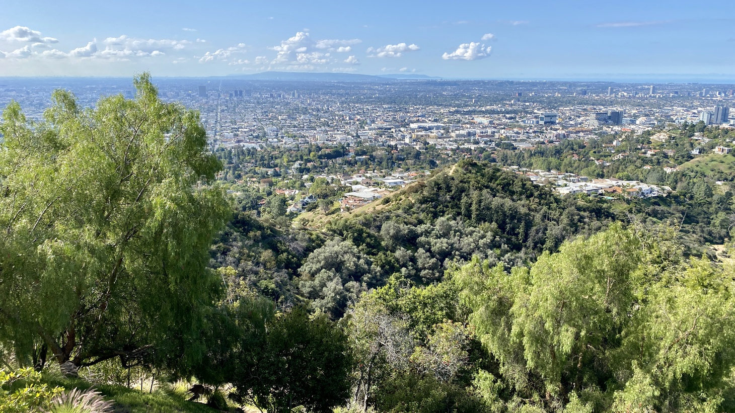 View of Los Angeles from Griffith Park, March 21, 2020.