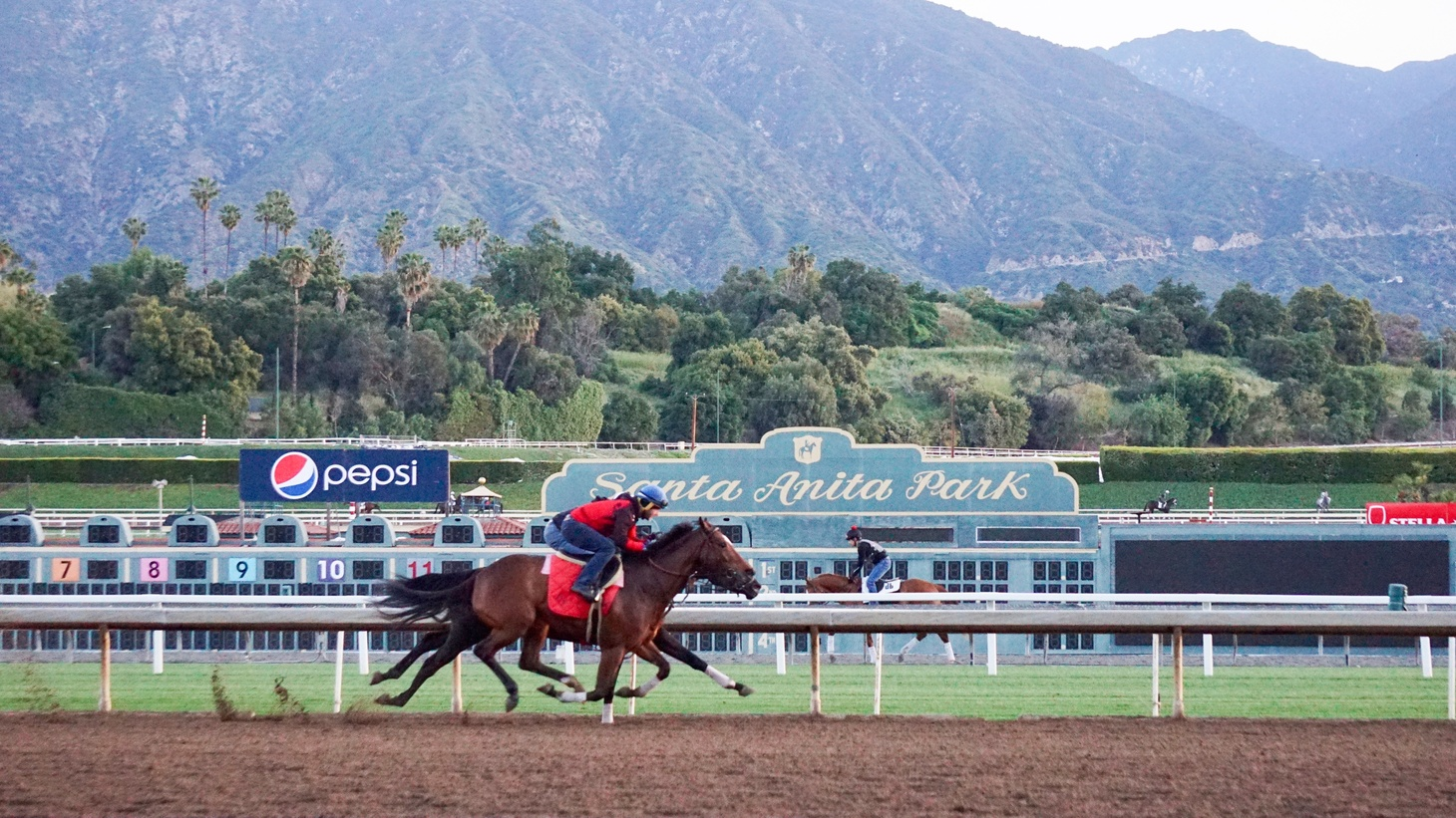 The Santa Anita race track on an early morning in May.