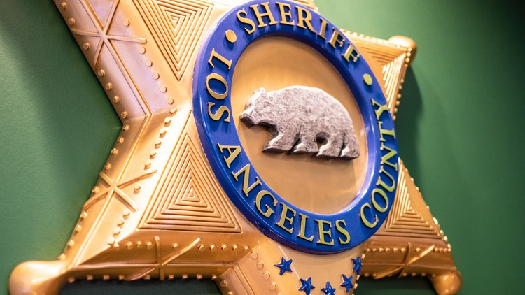 In 2016, the LA County Board of Supervisors created a Civilian Oversight Commission to be a watchdog on the LA County Sheriff's Department (LASD).