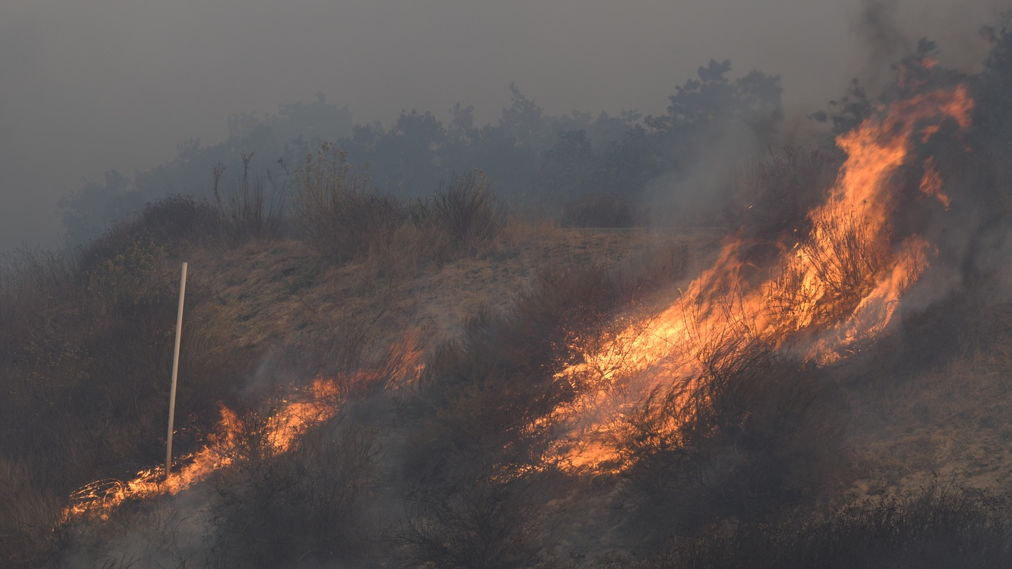 The Silverado Fire broke out Monday morning in Irvine's Silverado Canyon and quickly spread due to powerful winds, forcing tens of thousands of residents to evacuate.