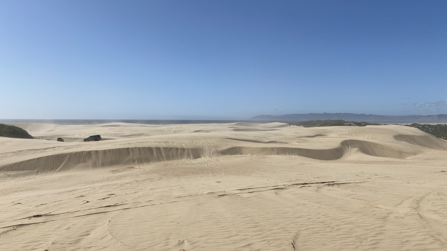 The Oceano Dunes have been an off-road attraction for more than half a century. While formal use of the dunes as an off-highway vehicle (OHV) playground goes back to the early 1980s, hitting unpaved back roads as a weekend activity took hold in the U.S. after World War II. One off-road group, the Dune Riders, was founded in 1959 and gave tours of the sandy expanse before the area was a park.