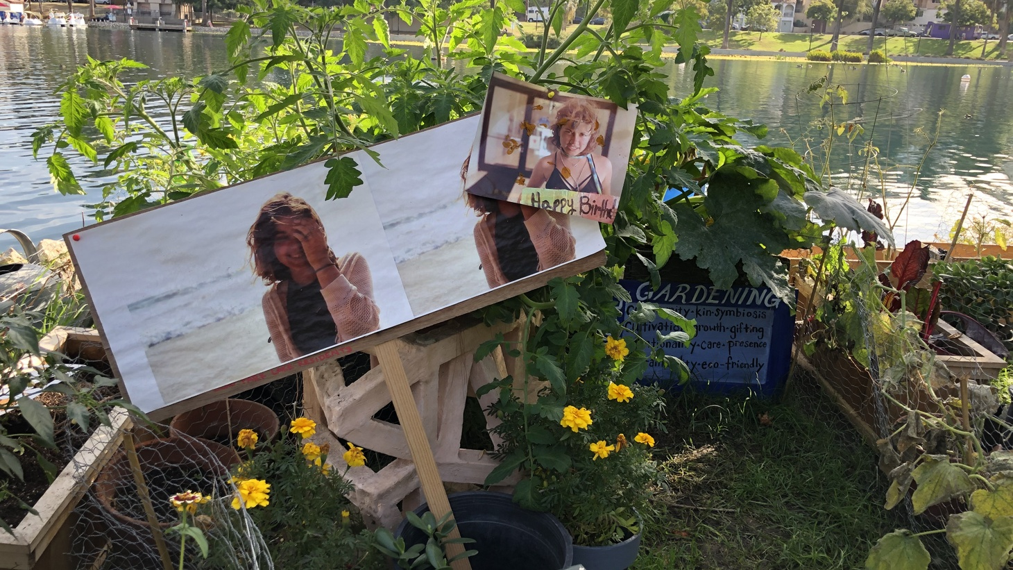 Photo: A community garden was created a few months ago to commemorate the fentanyl-related death of a woman who had been staying at the encampment.