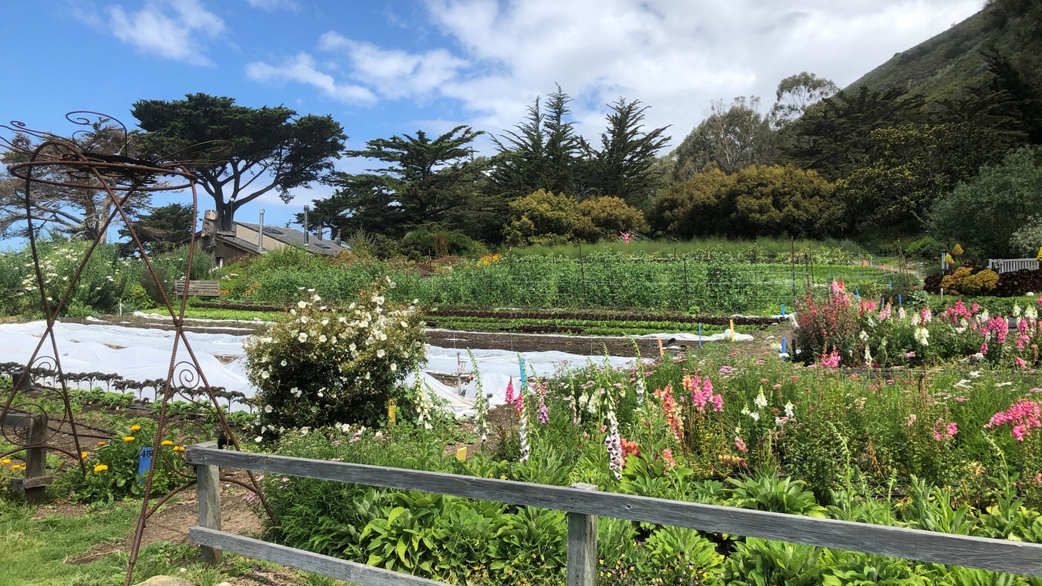 The garden at the Esalen Institute in Big Sur. Esalen CEO Terry Gilbey expects the institute to be completely booked for months, as people yearn for peace following the 2020 election.