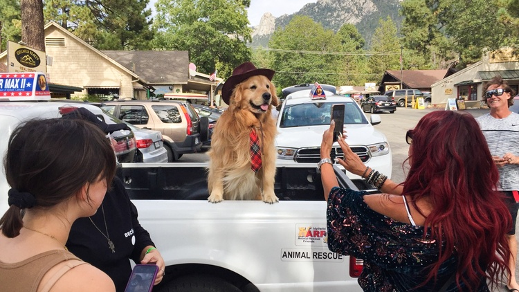 The mayor of Idyllwild, a small town in the San Jacinto, is very busy.