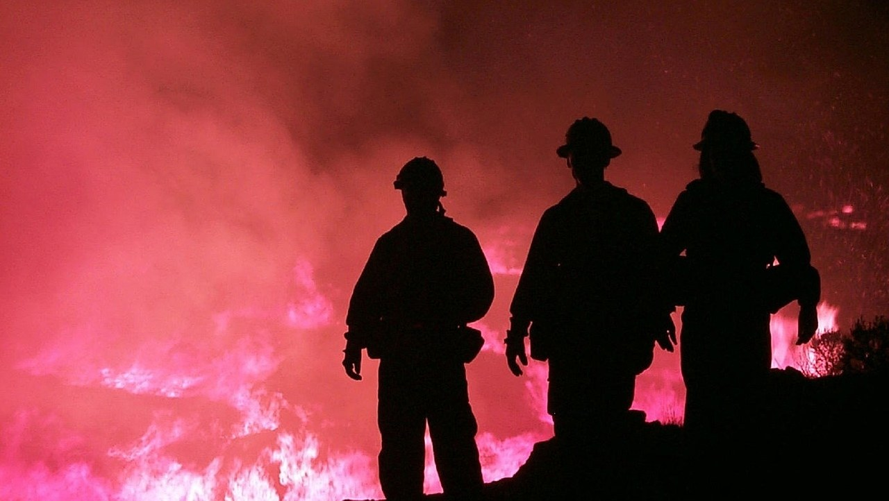 Firefighters facing a wildfire.