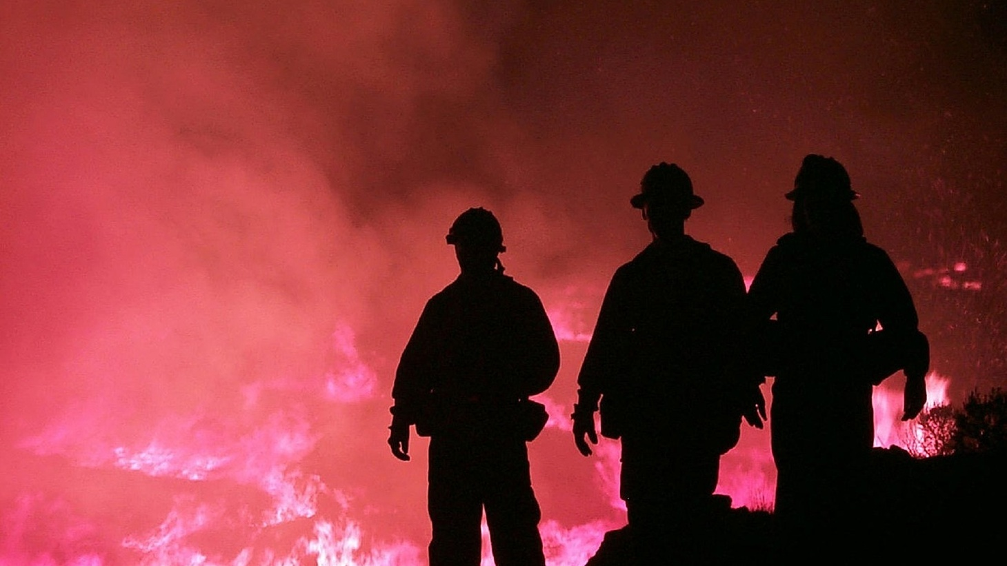 Firefigthers facing a wildfire.
