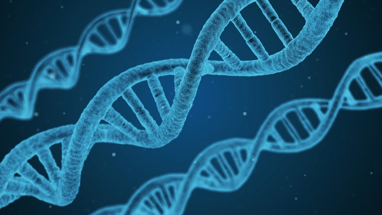 DNA can help you build your family tree, find out where your relatives came from, find a parent you've been searching for (or a sibling or distant relatives you may not have been…