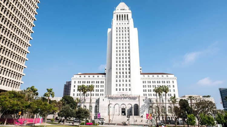 Three LA City Council members are calling for local elections get fully financed with taxpayer money.