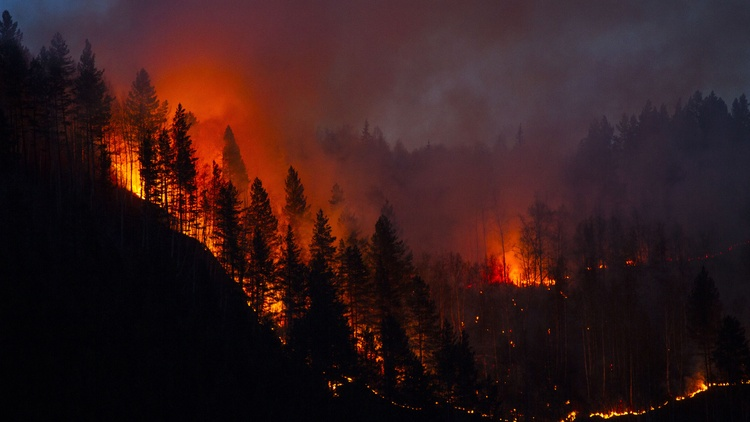 This year is expected to be California's worst wildfire season. That's after 2020 was the largest wildfire season ever, and before that, it was 2018.