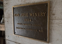 A search for Santa Barbara's oldest grapevines