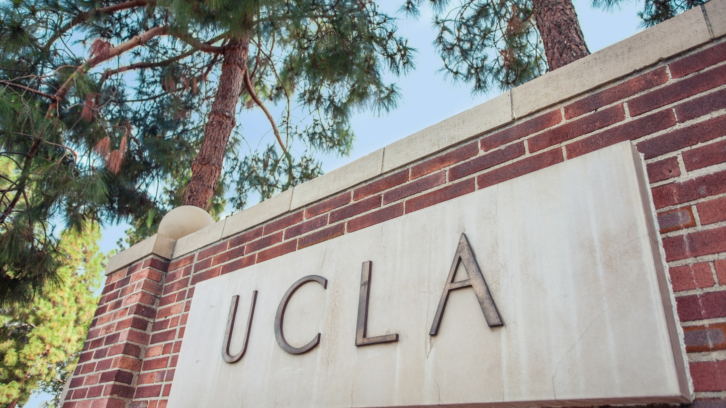 """A group of UCLA faculty is rushing to raise funds to bring their academic colleagues from Afghanistan to the U.S. — away from the Taliban regime. """"Some of the colleagues have been harassed, some are expelled, and others have been receiving death threats from the Taliban,"""" laments Professor Ali Behdad."""