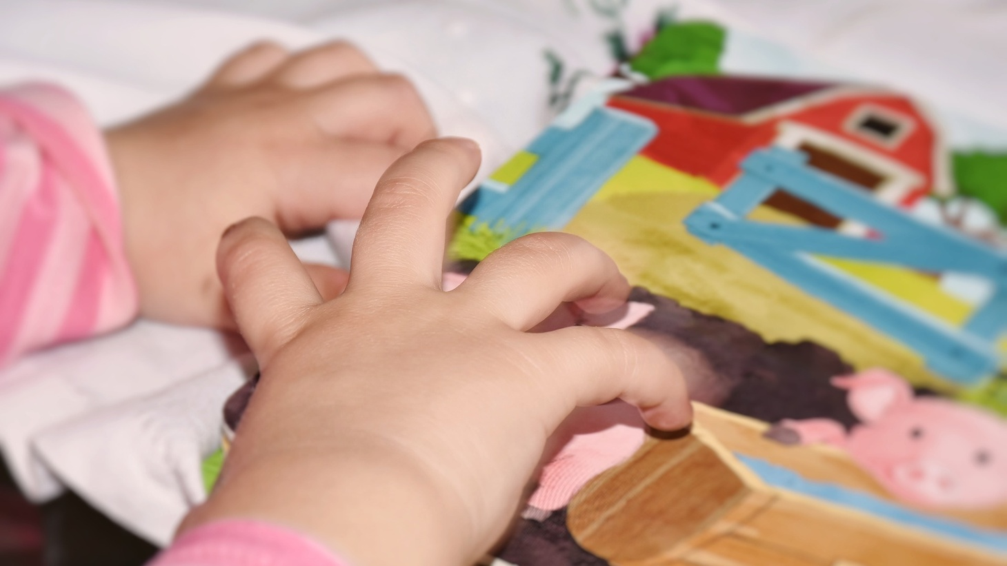 A small child's hands.