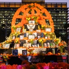 Día de Los Muertos 2020: The impact of COVID, plus virtual and in-person events around LA