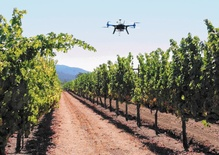 Drones, lasers and smart water sensors: new technology on California grape fields
