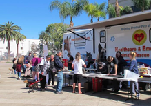 Homeless pets get care at pop up clinic