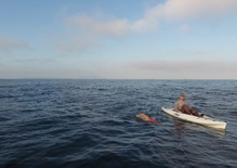 No breaks, no wetsuit: Swimming across the Santa Barbara Channel