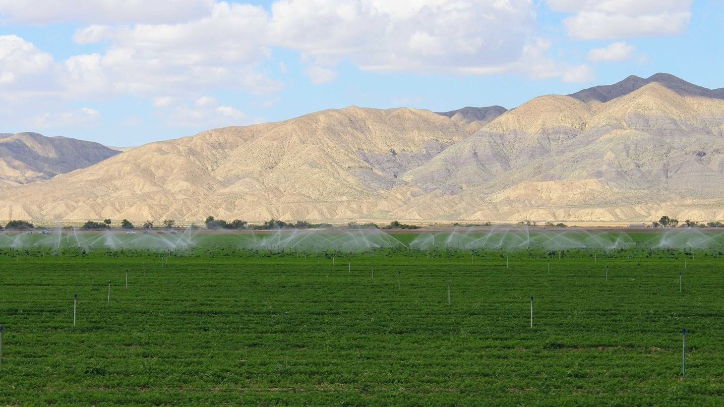 """In California, we talk a lot about water: where it comes from, how much we need, and when it'll dry up. In the Cuyama Valley, which sits in the high desert between Santa Barbara and Bakersfield, """"drying up"""" isn't just an abstract fear."""