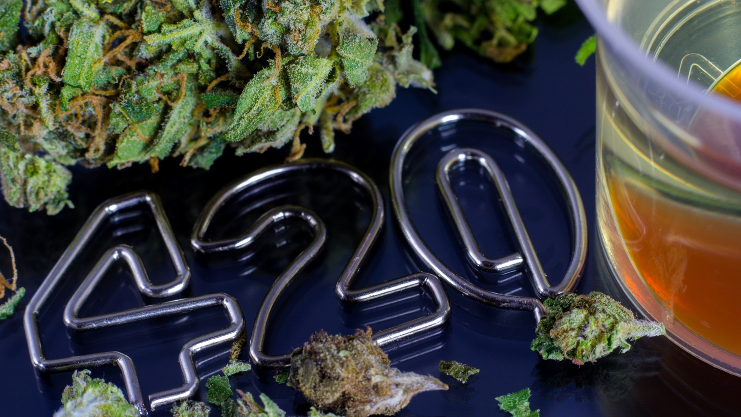 This year marks the 50th anniversary of 420.