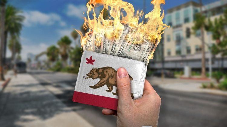 Legalizing the sale of cannabis in California has turned out to be a fruitful endeavor for the state thanks to taxes.