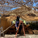 North Hollywood tiki bar Tonga Hut gears up for reopening, with  help of its dedicated community