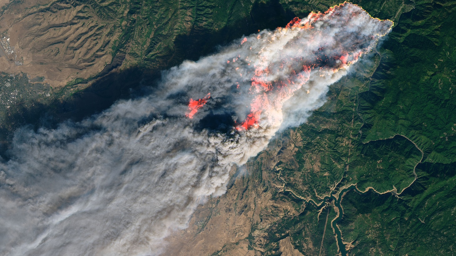 KCRW speaks with two residents of Paradise, Calif., where the Camp Fire destroyed thousands of homes and killed dozens of people. Susan Fort's home still stands. Natalie Carmichael was able to escape with her dogs but lost everything else.