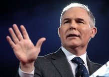 Scott Pruitt in hot water for looking swamplike