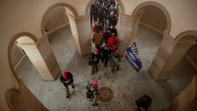 The pro-Trump mob at the Capitol
