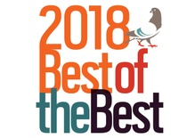 Best of the Best: The 2018 Third Coast Festival
