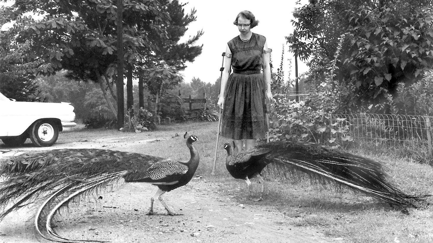 """Flannery"" is a documentary about American novelist Flannery O'Connor."