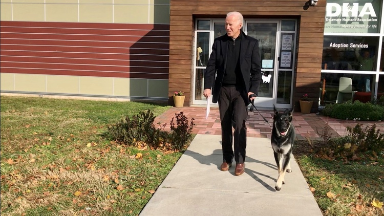 With Joe Biden, the White House gets its first-ever presidential pet from a shelter. Major is the Biden family's German Shepherd rescue.