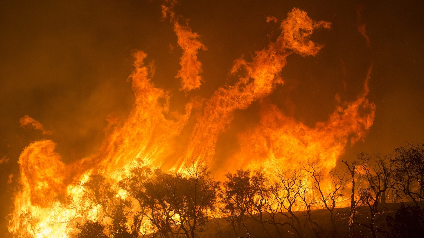 A wildfire at Los Padres National Forest in California.