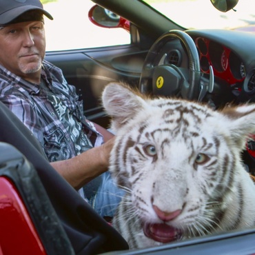"""""""Tiger King"""" is a true crime documentary series about Joe Exotic, a tiger breeder and former zoo owner."""