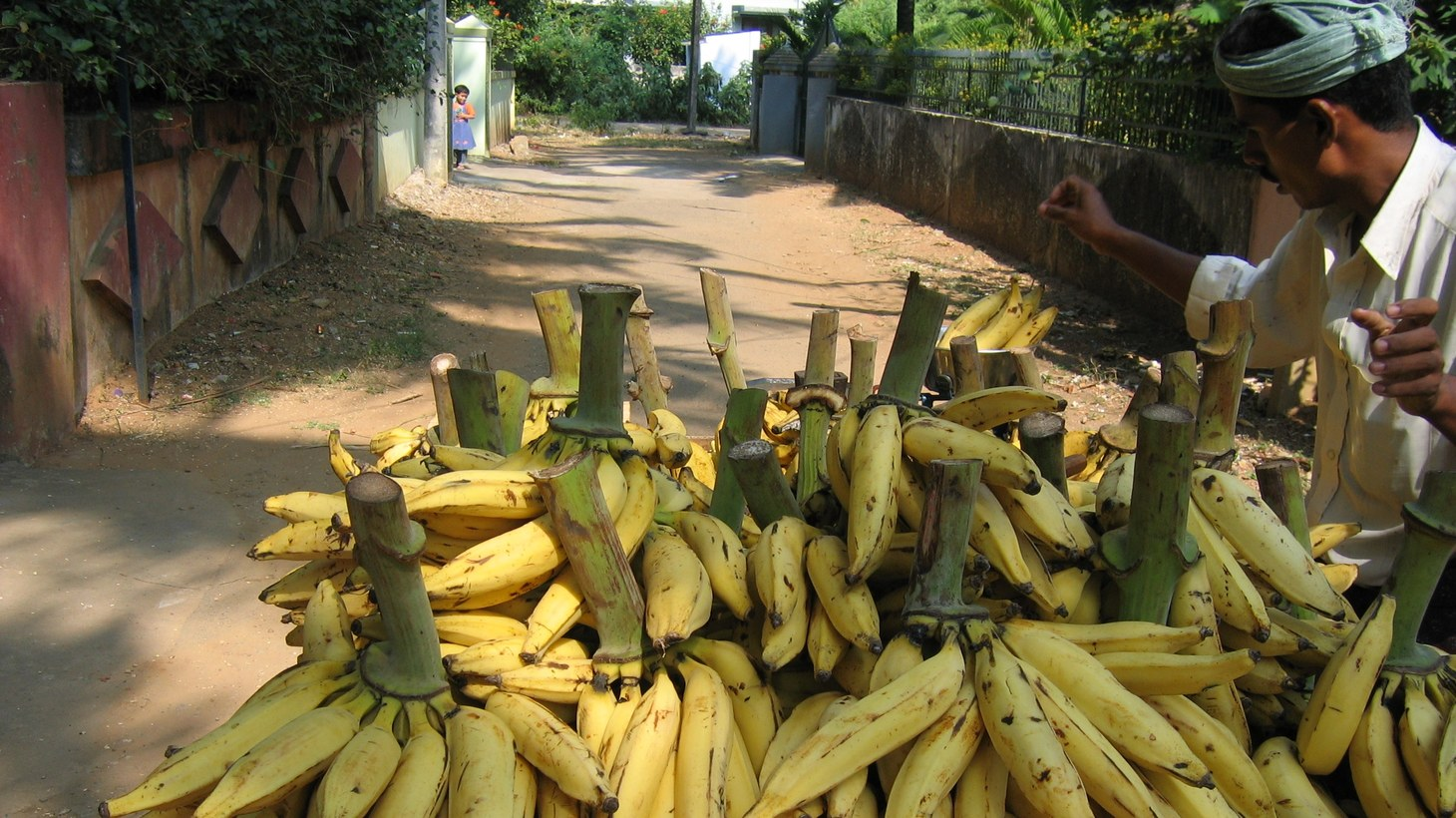 Plantains are used in many dishes from East Africa.