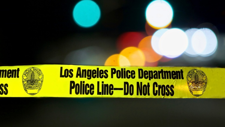 This year kicked off with an alarming rise in shootings in Los Angeles, according to the LAPD's public stats. Homicides are up, robberies are down, rapes are down, car thefts are up.